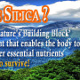 Silica-Powder-Supplement